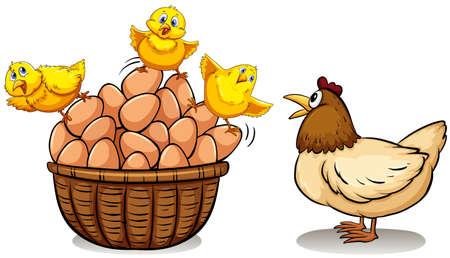 Chicken and eggs in basket illustration Illustration