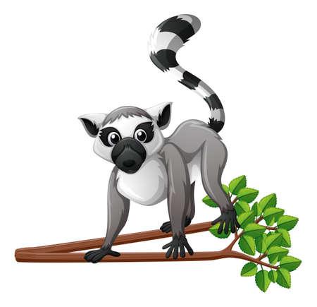 Lemur carino sulla illustrazione ramo