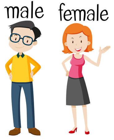 Opposite wordcard for male and female illustration