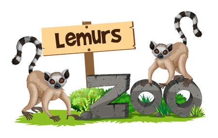 Two lemurs in the zoo illustration Illustration