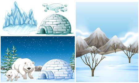 Polar bears and igloo on snow field illustration
