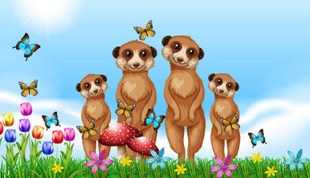Four meerkats in the garden illustration