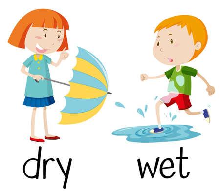Opposite wordcard for dry and wet illustration Illustration