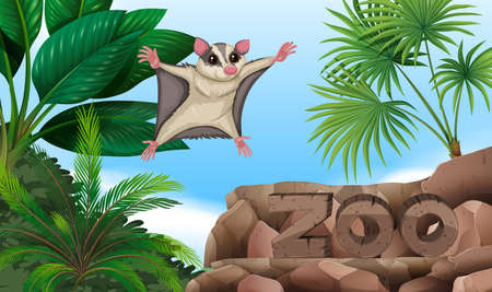 Sugar glider flying over the zoo sign illustration