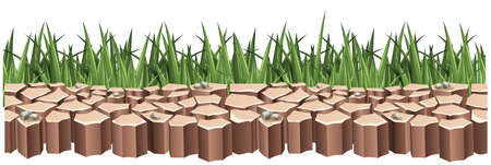 Dry land and green grass illustration Illustration