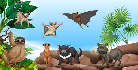 Wild animals on the mountain illustration