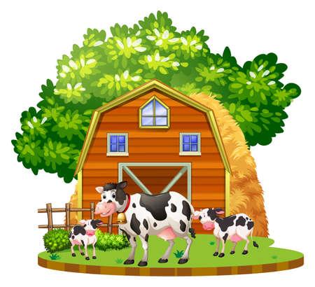Cows live on the farmyard illustration