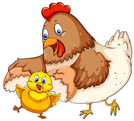 drawings image: Mother hen and little chick illustration Illustration