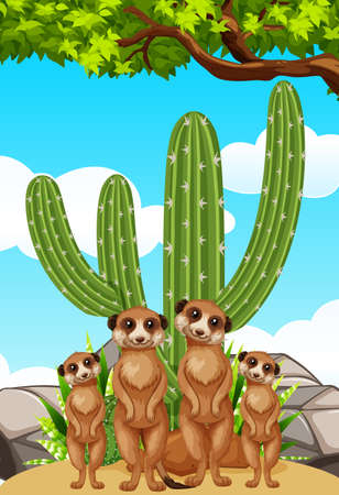 Meerkats standing by the cactus plant illustration Illustration