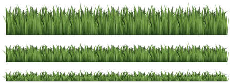 Seamless background for green grass illustration