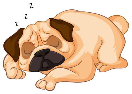 Little dog sleeping on white background illustration