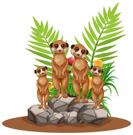 Vier meerkatten staan op steenillustratie
