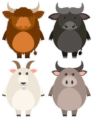 Farm animals on white background illustration