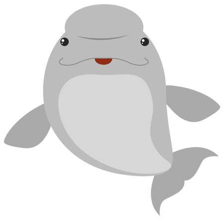 Beluga whale on white background illustration Illustration