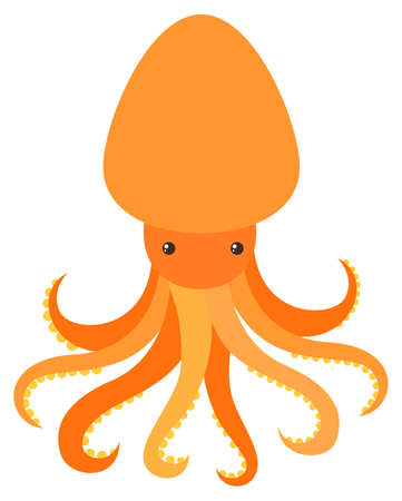 Orange octopus on white background illustration