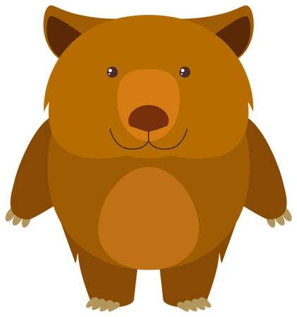 koala: Wombat en la ilustración de fondo blanco Vectores
