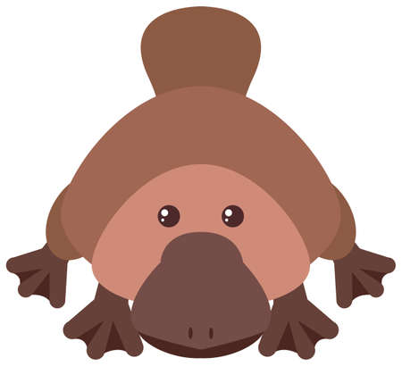 people: Platypus with happy face illustration