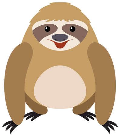 oso perezoso: Perezoso en la ilustración de fondo blanco