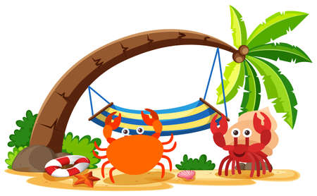 Crab and hermit crab on the beach illustration