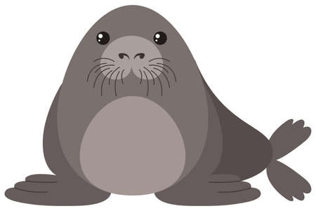 Seal with round body illustration.