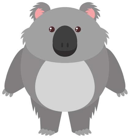 Cute koala bear on white background illustration