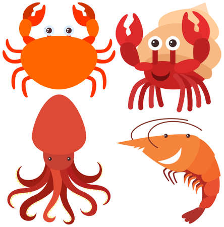 drawings image: Four types of sea animals illustration Illustration
