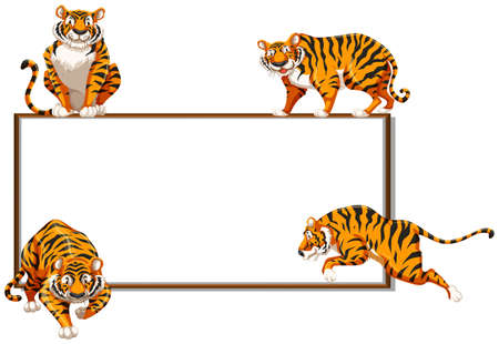 Border template with four wild tigers illustration