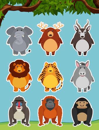 Wild animals on grass illustration