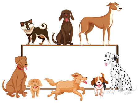 Many kinds of pet dogs on the board illustration Illustration