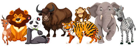 Different kinds of animals on white background illustration.