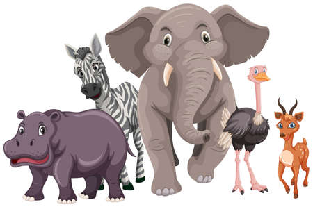 Wild animals with happy face illustration.