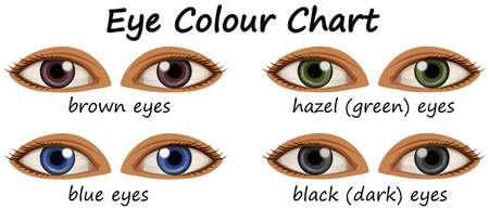 yeux humains avec différentes couleurs illustration