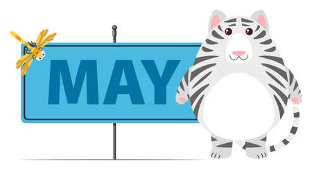 Gray cat and sign for May illustration Illustration