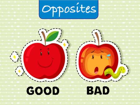 Opposite words for good and bad Vector illustration. Illustration