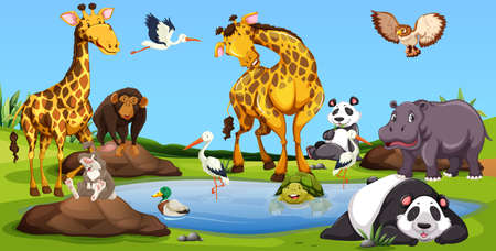 Wild animals together by the small pool illustration Illustration