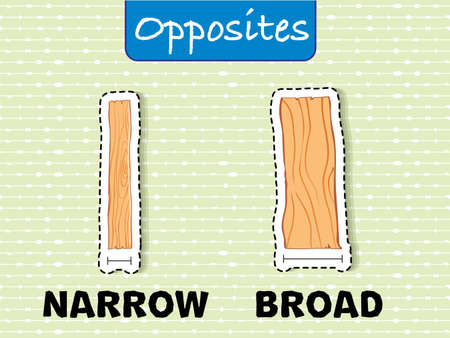 Opposite words for narrow and broad and it's example in a vector illustration