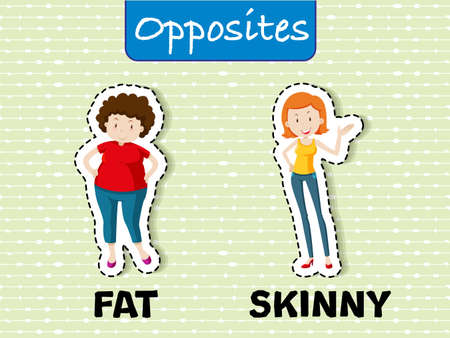Opposite words for fat and skinny, with corresponding sample illustration