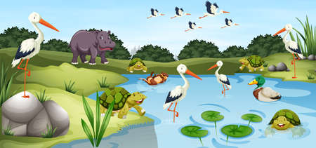 Many wild animals in the pond landscape background illustration