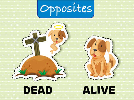 Opposite words for dead and alive with corresponding image sample vector illustration