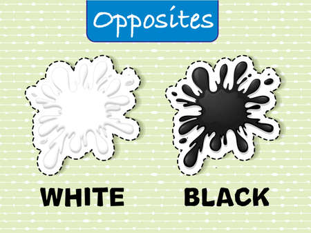 Opposite words for white and black with corresponding image sample vector illustration