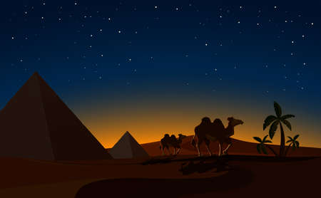 Pyramid and Camels in Desert night Scene illustration