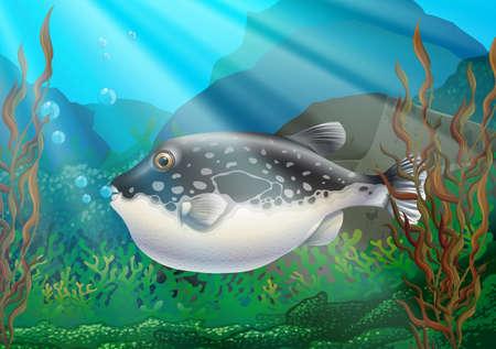 Puffer fish in under ocean illustration Illustration