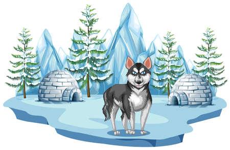 Siberian Husky Dog in Arctic illustration Illustration