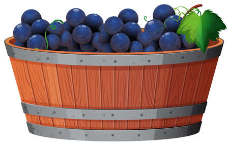 A Vine of Grape in Bucket illustration