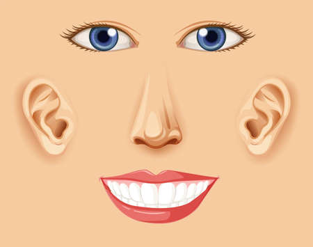 A Human Happy Facial Element  illustration