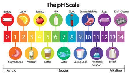 Een onderwijsaffiche met illustratie van de pH-schaal