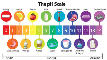 Une affiche d'éducation de l'illustration de l'échelle de pH Banque d'images - 103211917