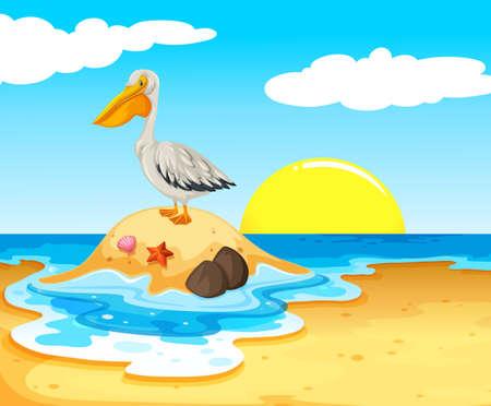 Pelican Bird on the Beach illustration Illustration