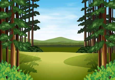 Scene of a beautiful woods illustration Stock Illustratie