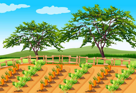Vegetable Farming in the Rural Area illustration